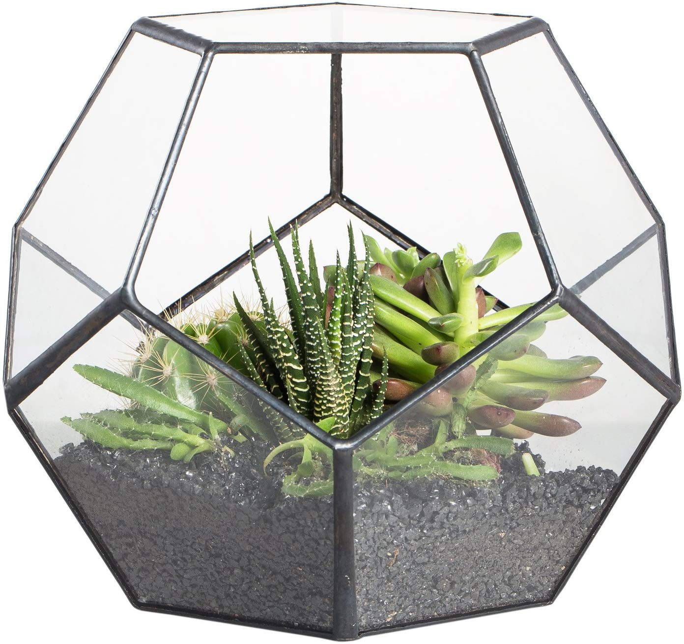 Black Glass Geometric Terrarium Container