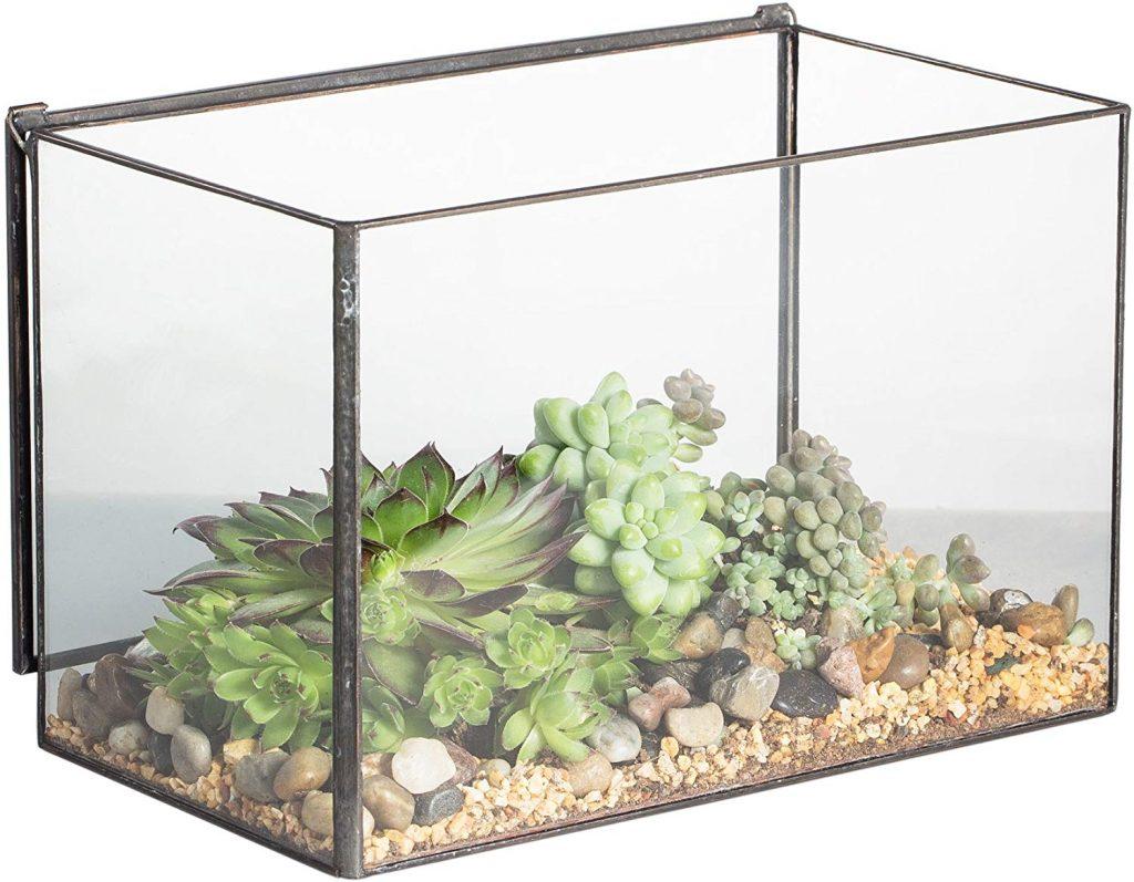 NCYP Rectangle Cuboid Desk Clear Glass Geometric Terrarium