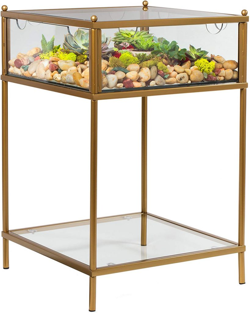 Terrarium Display End Table with Reinforced Glass in Gold Iron