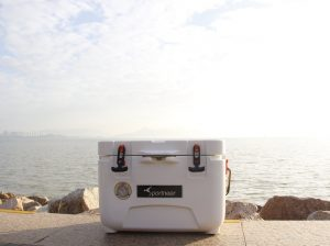 7 Best Small Coolers to Chill With